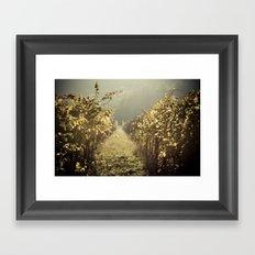 Autumn grapes vine Framed Art Print