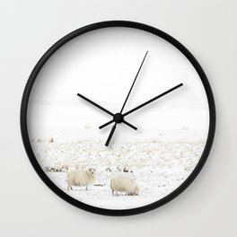 Icelandic Sheep II Wall Clock