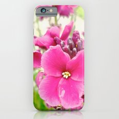 Chartwell iPhone 6s Slim Case