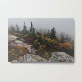 Acadia National Park Fog Metal Print