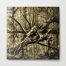 Secret Place in Nature 03 Metal Print