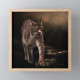 Into The Light - Lynx Art Framed Mini Art Print