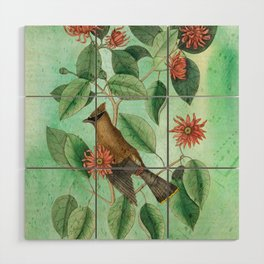 Bohemian Waxwing with Carolina Allspice, Antique Natural History Collage Wood Wall Art