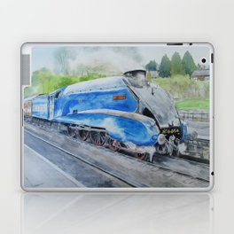 Bittern Laptop & iPad Skin