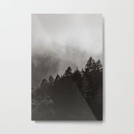 Misty Forest in Black and White II Metal Print