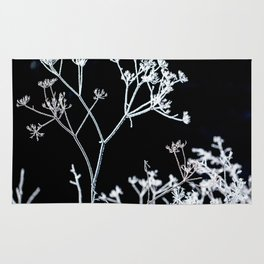 Frosted plant at cold winter day on black background Rug