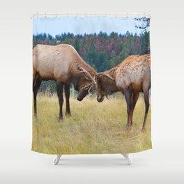 Bull elk in the rut season in Jasper National Park Shower Curtain