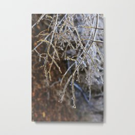 Icy Branches #4 Metal Print