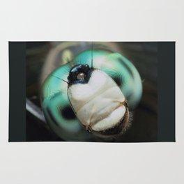 Cool Dragonfly Close-up Blue Darner Rug