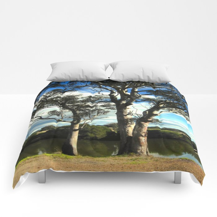 White Gum Trees Comforters