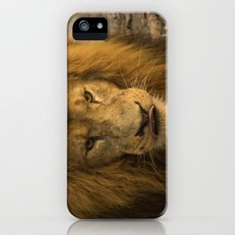 Lion - Time To Eat iPhone Case