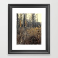 Tails Of Fall Framed Art Print
