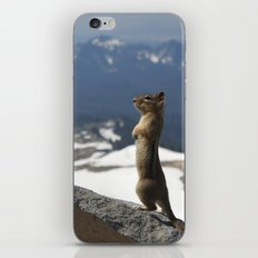 Posing iPhone & iPod Skin