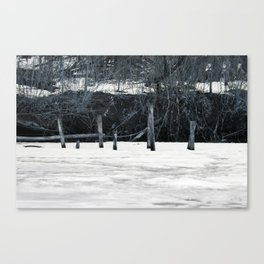 Pond Posts Canvas Print