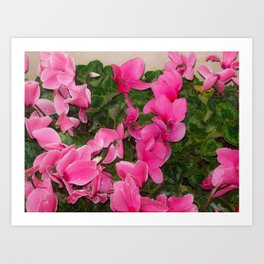 Flowers Hanging Out With leaves Art Print