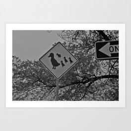 Duck Crossing  Art Print