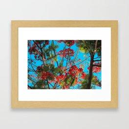 Bright Tropical Tree Framed Art Print