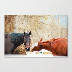 True Friends. I think we're being watched. Canvas Print