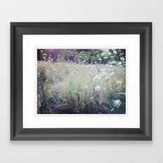 St. James Park Framed Art Print