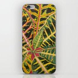 Croton iPhone Skin