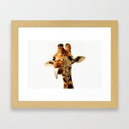 Fanny giraffe Framed Art Print
