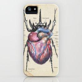 Anatomy Of A Lovebug iPhone Case