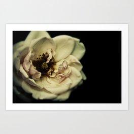 The Great Flower Consortium - Member No. 136A Art Print