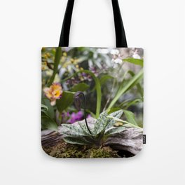 Dainty Orchid Tote Bag