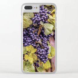 Newport Wine Vineyard and Grapes, Rhode Island Clear iPhone Case