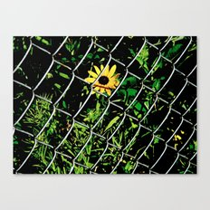 You Can't Help Her Canvas Print