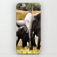 elephants iPhone & iPod Skins featuring Elephants by Regan's World