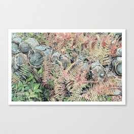 Colored ferns. Canvas Print