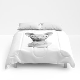 Sphynx Comforters