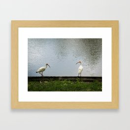 A Lakeside Chat Framed Art Print