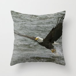 Bald  Eagle catching fish from river. Throw Pillow