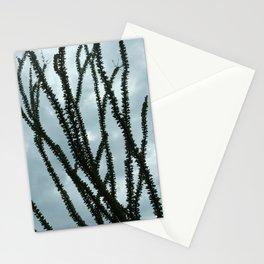 Ocotillo Sky No. 2 Stationery Cards