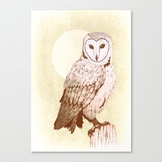 Barn Owl recolour Canvas Print
