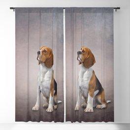 Drawing Dog Beagle 24 Blackout Curtain