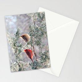 Hoarfrost Cardinals Stationery Cards