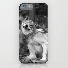 Fooling around wolfs iPhone Case