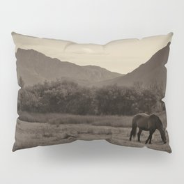 Tranquil Pillow Sham