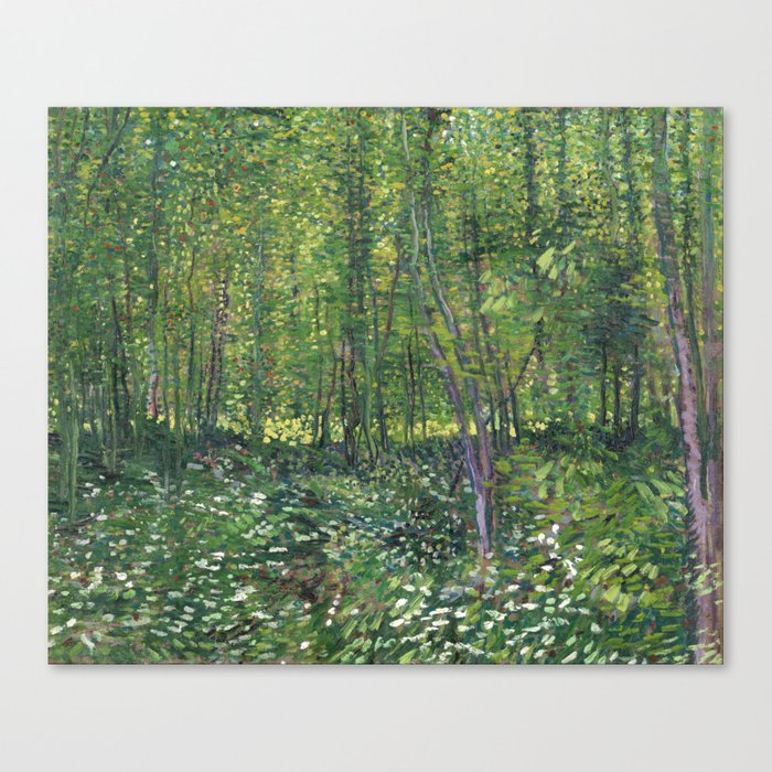 Vincent Van Gogh Trees and Undergrowth Canvas