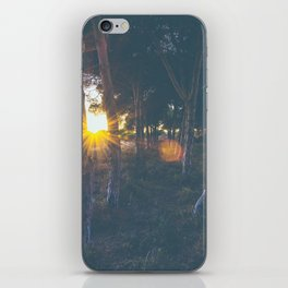 Cold Forest iPhone Skin