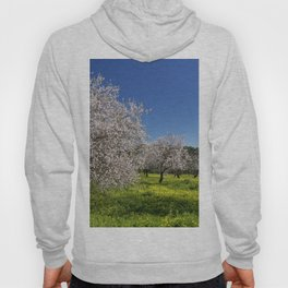 Almond trees in flower in Spring Hoody
