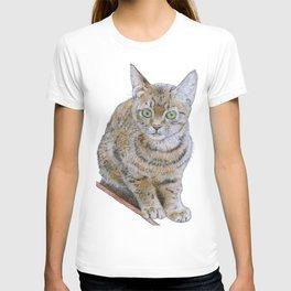 Sensitive Cat T-shirt