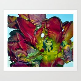 Still life with Red Tulips Art Print