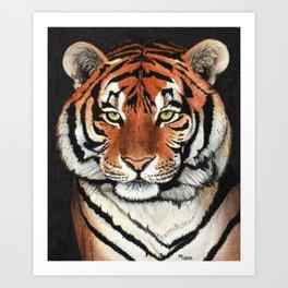 Tiger portrait drawing Art Print