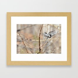 Landing Gear Down Framed Art Print