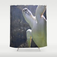 turtles Shower Curtains featuring Turtles by Irene Jaramillo