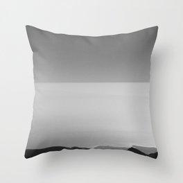 PNdT view  Throw Pillow